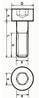 Innensechskantschraube M5 x 55